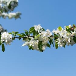 Dus toch eindelijk lente...