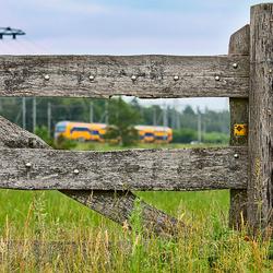 Intercity door hek