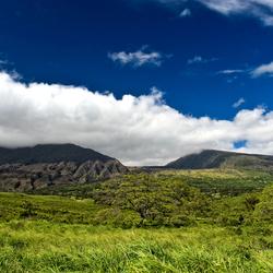 Kipahulu Forest Reserve, Maui, HI
