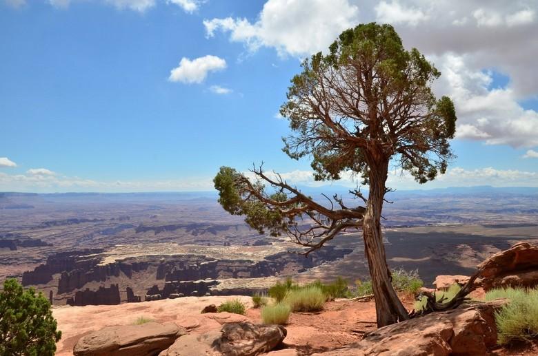 Canyonlands. Isle in the sky - Canyonlands (Utah). Isle in the sky.<br /> Geweldige uitzichten, mooie kleuren al is het lastig om dat ook op een foto