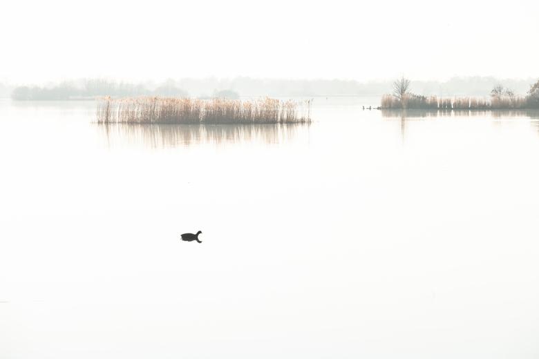 De Leien - De Leien Friesland