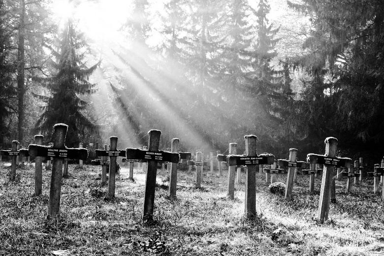 Licht en kruizen - Bedankt voor jullie reacties op mijn vorige foto.<br /> Deze is ook gemaakt op een Belgische begraafplaats in Rekem .<br /> De fo