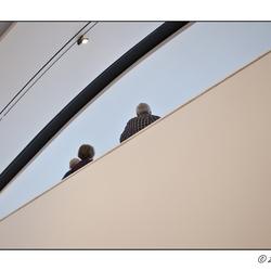 Assen - Drents museum 33