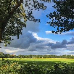 Landschap achter Vries