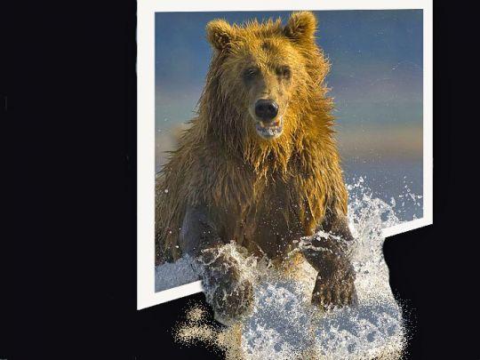 beer uit de muur - een probeersel om te kijken hoe ik het nu doe dat out bount fotografie bewerken.