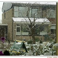 Winter in maart 2007