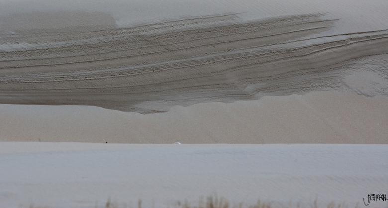 zandlagen vs jaarringen - Aan de rand van de duinen vind je deze zandlagen terug, deze deden me, afgezien van het tijdsaspect, denken aan jaarringen v