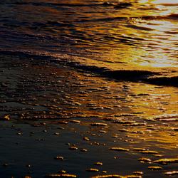 evening light I