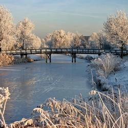 winter -2-