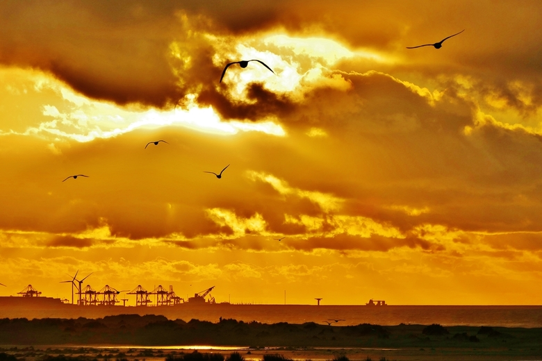 Uitzicht op Maasvlakte - Blik vanuit een hoge duin naast de zandmotor op de havenactiviteiten in de Maasvlakte bij zonsondergang