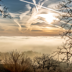 Goedemorgen! Ochtend mist