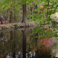 Herfst in het Bos Pietersheim