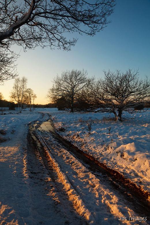 Winter - Vandaag maar een treurige dag ten opzichte van afgelopen zondag toen ik nog een heerlijke dag in het Winterse Kampina heb mogen mee maken.<br