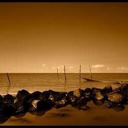 Netten aan de afsluitdijk