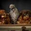 Three little chickies