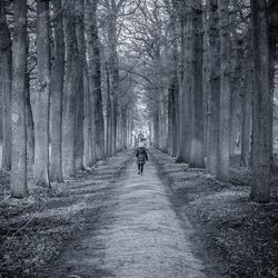 161220 Landgoed Heeswijk