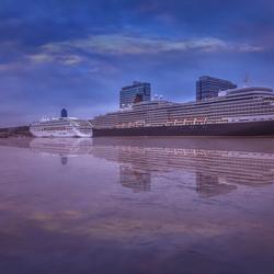 Zee cruisescheppen.