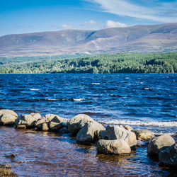 on the foot of the cairngorms