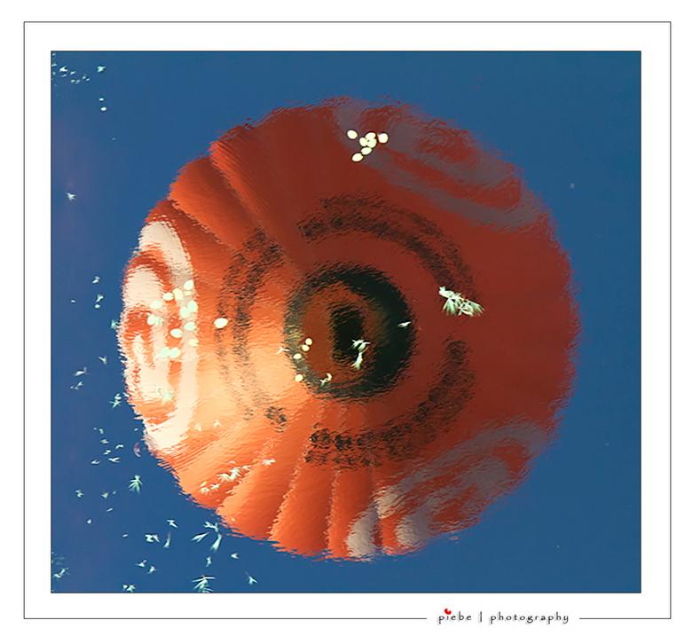 Ballooning in Joure - Gisteravond (4 sept 2012) voor het eerst in een hete luchtballon meegeweest. Ik had dit cadeau gekregen van mijn kinderen voor m