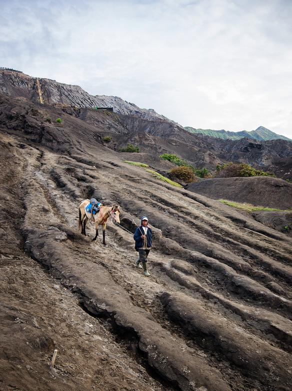 Bromo te paard - Als je Mount Bromo in Indonesië op wilt om te zien hoe de krater zijn zwaveldampen uitspuwt, kun je te voet helemaal naar boven. Op d