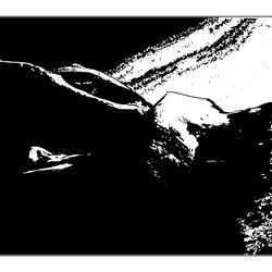 Jungfrau in black 3