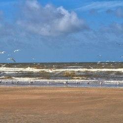 IJmuiden strand