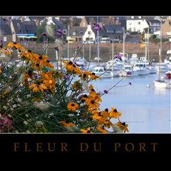 Fleur du Port