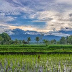 Tetebatu, Gunung Rinjani - Lombok (Indonesia)