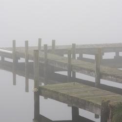 Lijnen spel in de mist