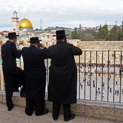 WesternWall Lookout