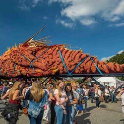 Bloemencorso Zundert - Gevaarlijk Transport - de winnaar van 2016