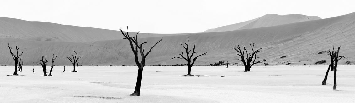 Deadvlei - Panorama - Bewerkt