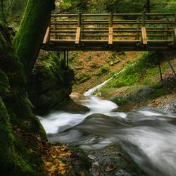 river under the bridge