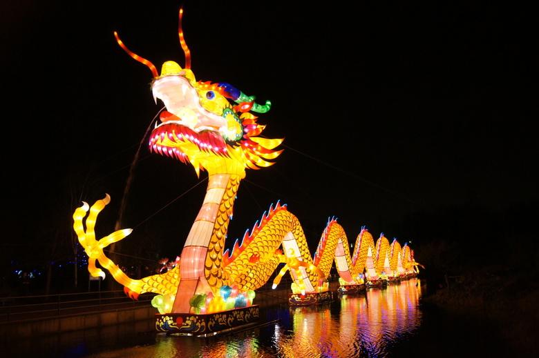 Chinese lichtshow draak - Chinese lichtshow in de hortus in Haren