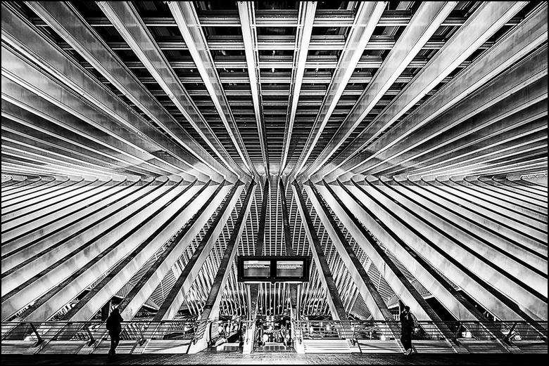 Artistieke architectuur 15 - Het prachtige treinstation van Guillimins in Luik is een gebouw van wereld formaat van de Spaanse architect Santiago Cala
