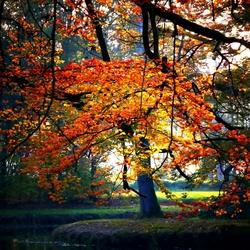 Echt herfst