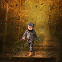 L'automne va arriver....