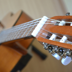 aria ak65 gitaar