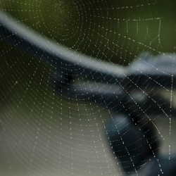 3D web