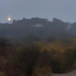 Vuurtoren van Schouwen-Duiveland