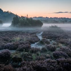 Terhorsterzand, Drenthe