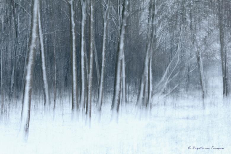 Snow world - Eindelijk vandaag weer eens wat sneeuw in het Westen van het land.<br /> Genieten buiten want morgen is het weer weg