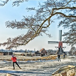 Hollands winterweer