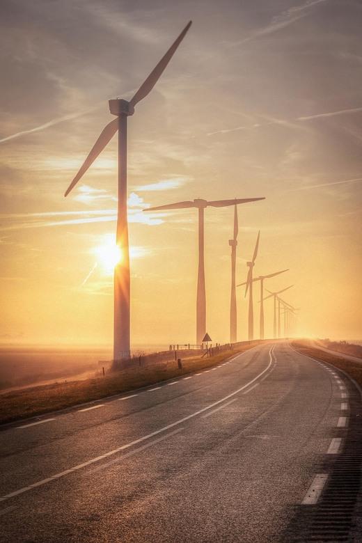 Driving towards the sun - Mistige ochtend langs de Eemdijk, Flevopolder