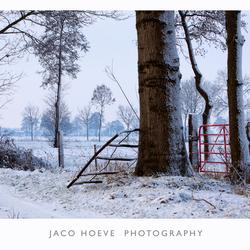 Het rode hek