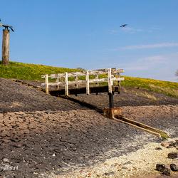 Steiger kust Vlieland