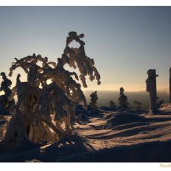 Winteruitzicht 5