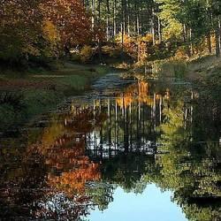 Zomaar een herfstplaatje..