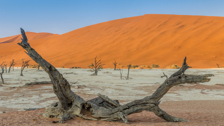 Deadvlei anders - Foto gemaakt in Namibië in de rode duinen van de Deadvlei. Meestal zie je een staande boom tegen de rode duinen aan gefotografeerd m