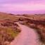 Wandelen door de duinen van Texel